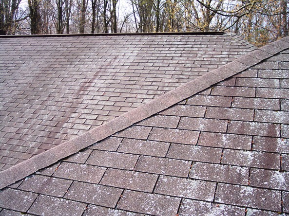 Roof Cleaning By Sterling Maintenance Llc